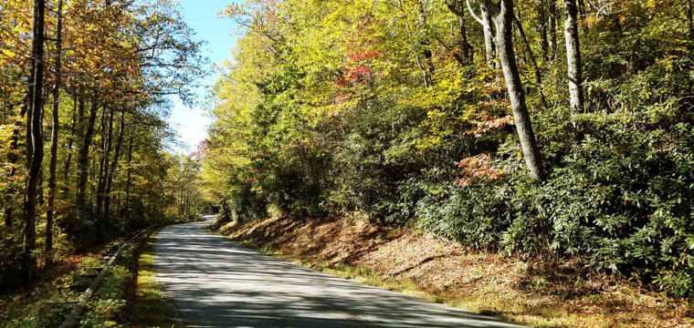 Ride Report: T7 Group Tour (Fall, 2017)