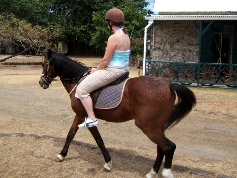 Horseback Riding Walk